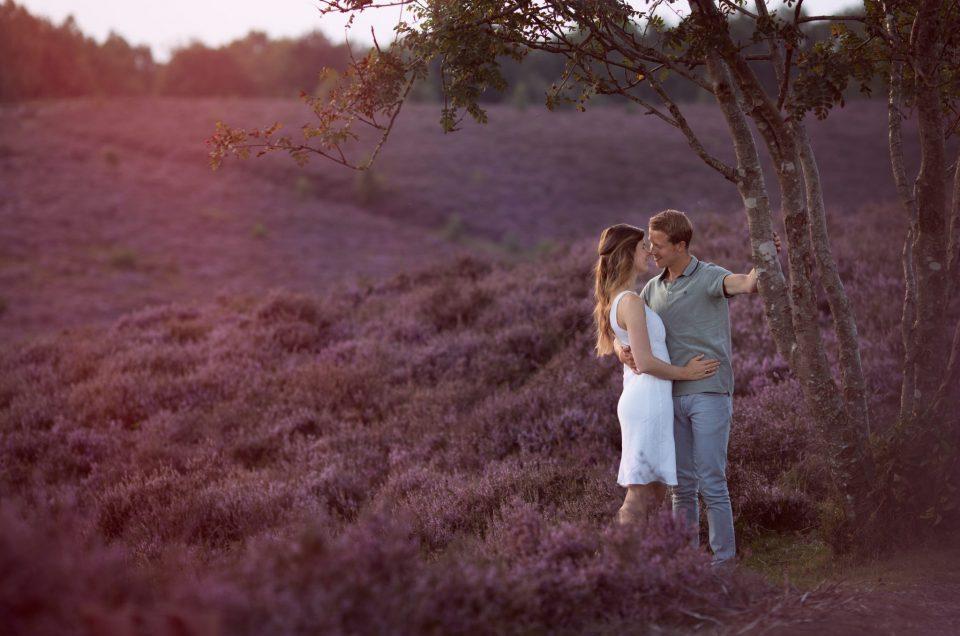 Fotoshoot op de paarse heide