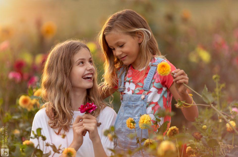 Bloemen in Hanneke's Pluktuin