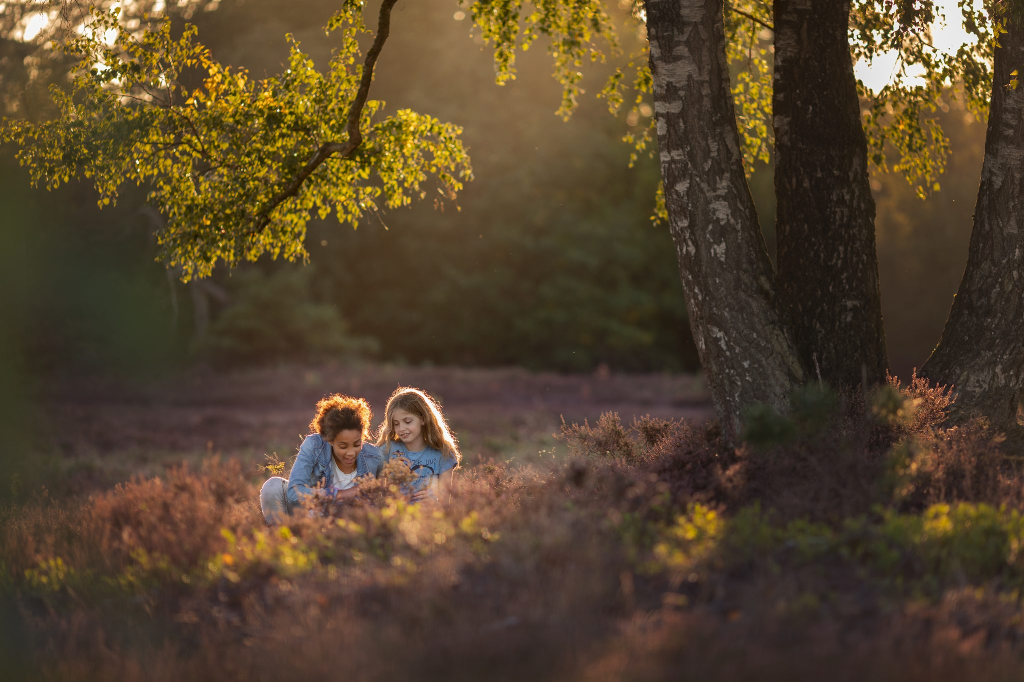 Familie fotograaf | Fotografie Lelystad & Veluwe | Familie | Fotoshoot op de heide Elspeet