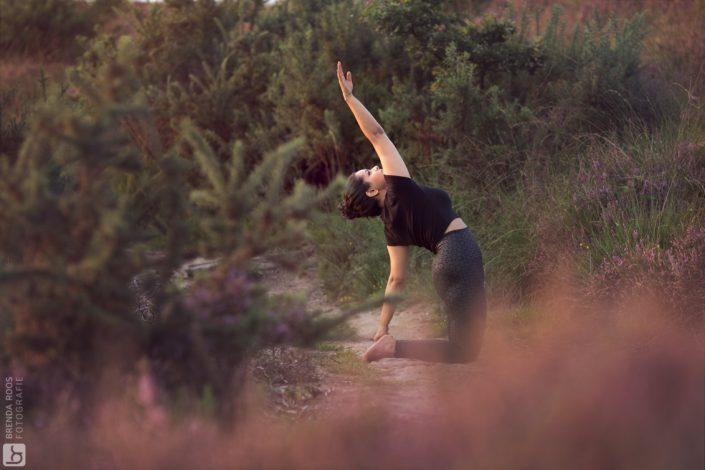 Yoga fotoshoot Posbank Veluwezoom